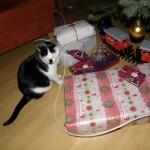 Was? Sind die Geschenke alle für mich?